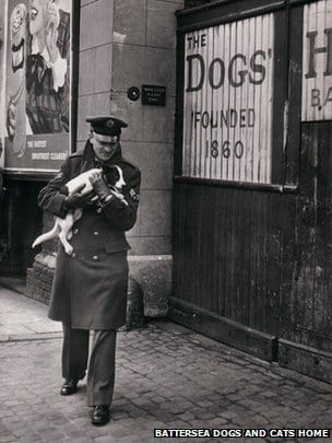 An RAF serviceman delivers a stray to Battersea