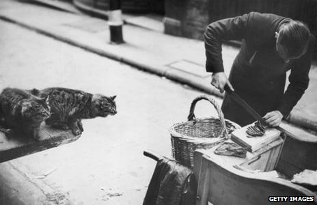 Brit-petCullWW2cats-meat-man_gettycrop