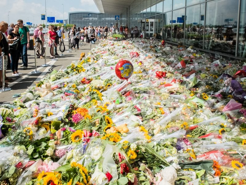 The MH17 tragedy and the outrageous propaganda that ensued provoked a worldwide response of revulsion toward Russia and the Novorussian people.