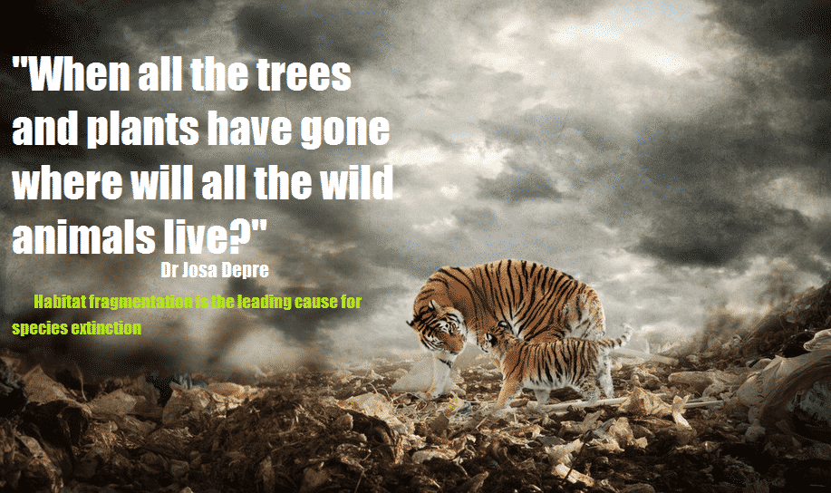 life on earth is dying � the greanville post