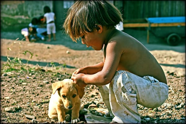 poorChild and puppy