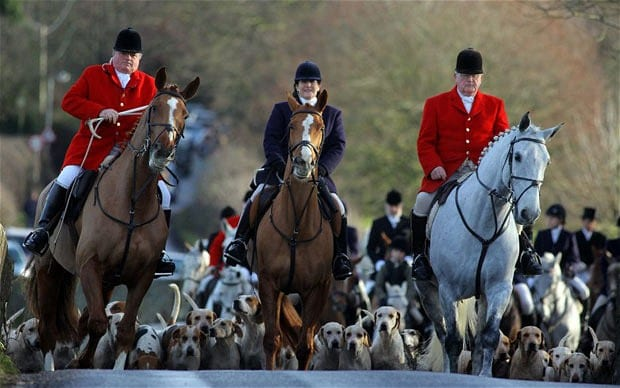 For all their outwardly splendor, fox hunts are cold-blooded, highly choreographed acts of cowardice and distilled sadism against helpless animals.  The moral imbeciles who ride to these hunts should be the hunted.