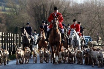 foxhunting-getty