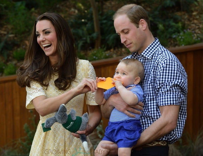 """Prince William's marriage to a """"commoner"""" has triggered a paparazzi's feeding frenzy. Meanwhile, the Prince, telegenic, unassuming, with a beautiful bride on his arm, has done more to fortify monarchy than a thousand p.r. worms working overtime. And the British press continues to play its assigned role as royal boosters."""
