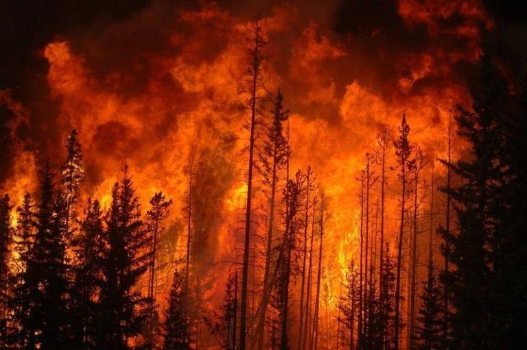 forest fire, Alberta