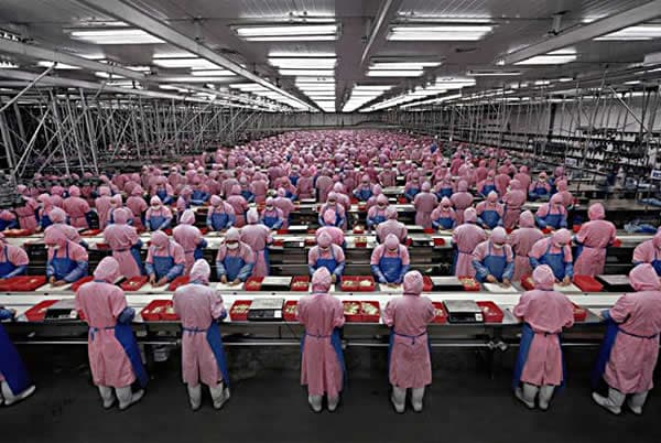 china-foxconn-staff