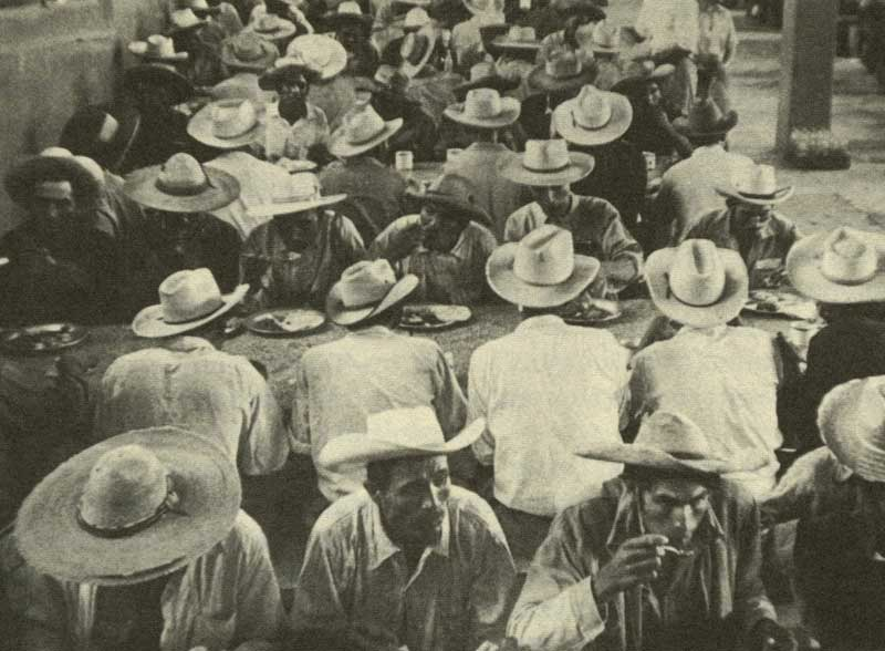 Mexican braceros eating lunch in the government camps. (1930)