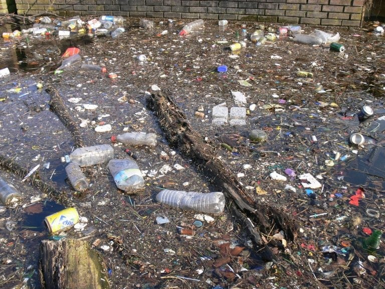 While multiplying like mindless bacteria, we have made our oceans and rivers a dumping ground for our offal.