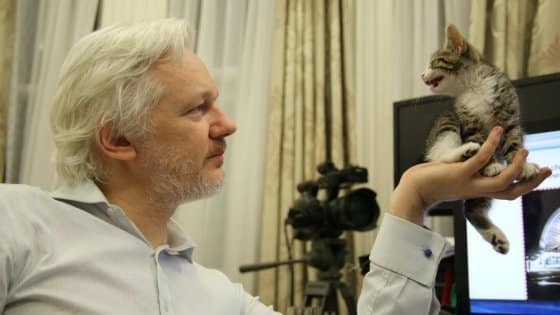 The pseudo-left stabs Assange in the back